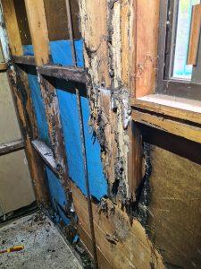 bathroom detroyed by termites