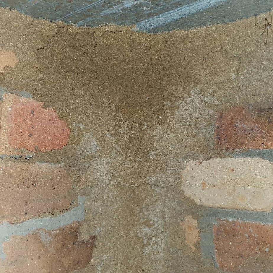 massive termite lead in sub floor