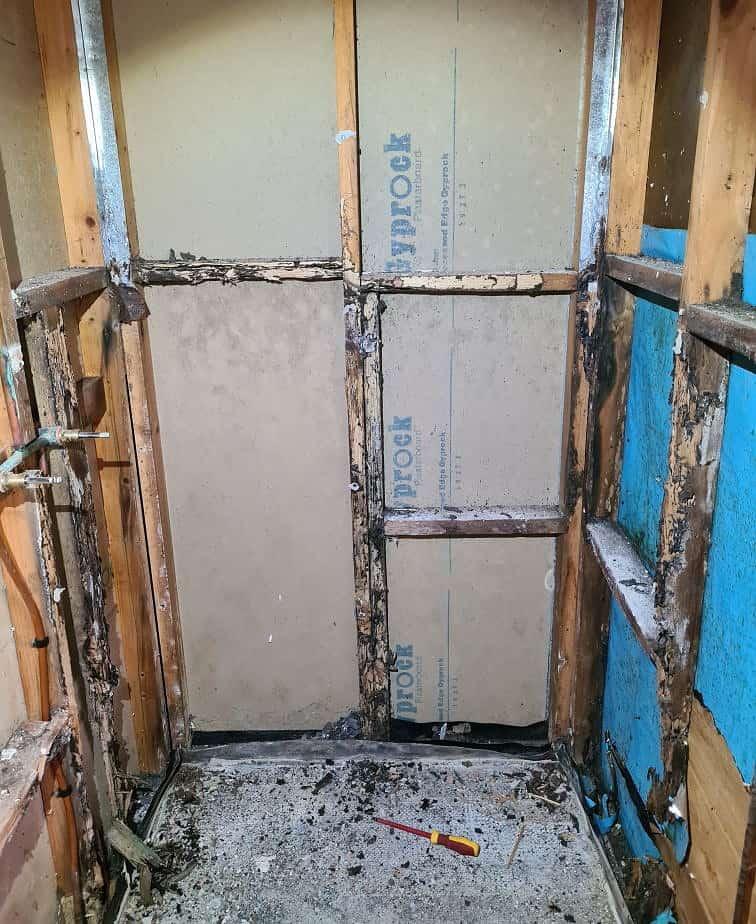 termite ravaged bathroom