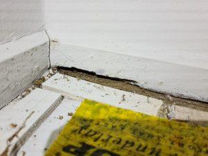 Evidence under carpet