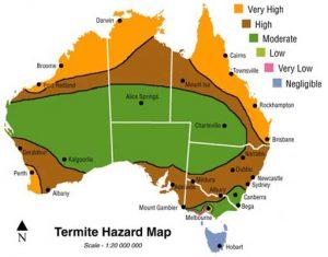 Gold Gold Termite Treatment